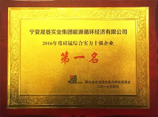 2016年度硅锰综合实力十强企业第一名