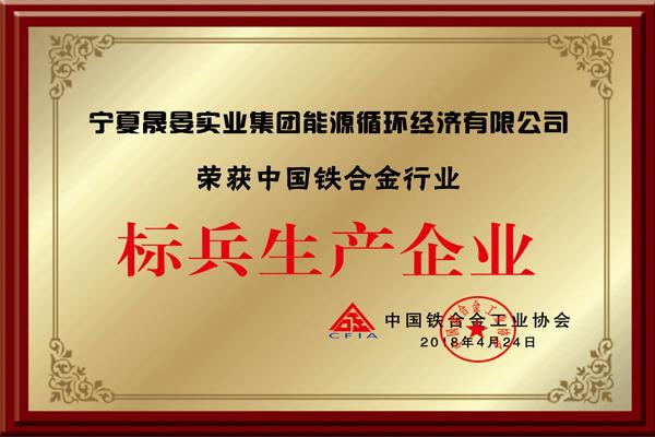 中国铁合金行业标兵生产企业
